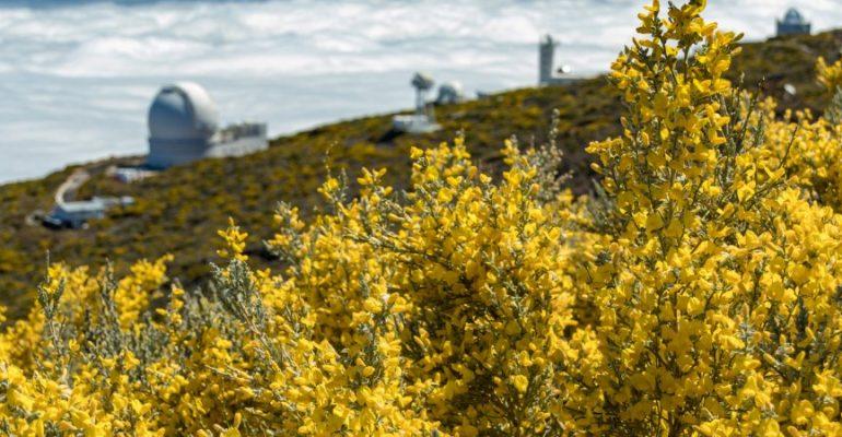 Quand les paysages dorés recouvrent l'Espagne