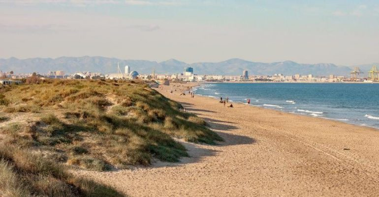 El Saler, la plage sauvage de Valence qui a été sauvée de la destruction