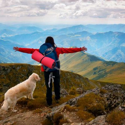 Parcourir les chemins avec son chien