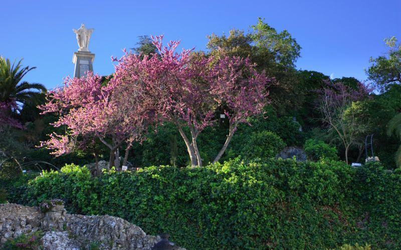 Rocher du Sagrado Corazón et Place d'Andalucía
