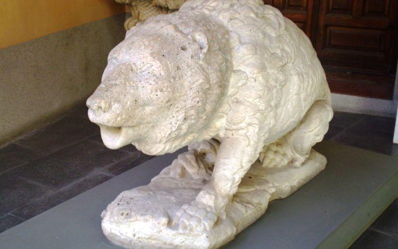 Ours de la fontaine de Cybèle