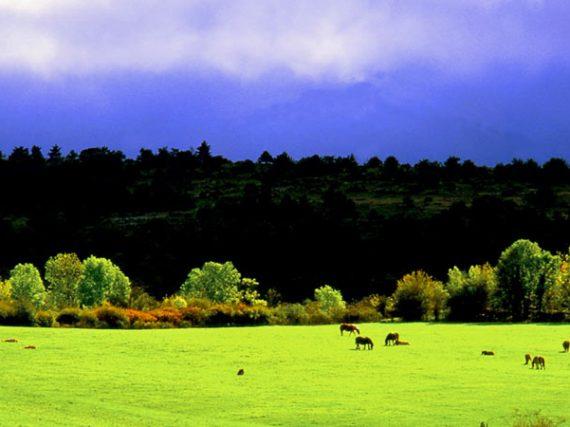 Parc Naturel de Valderejo