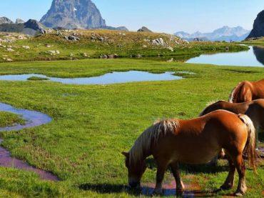 Vallée du Tena, un recoin lointain et naturel au cœur des Pyrénées