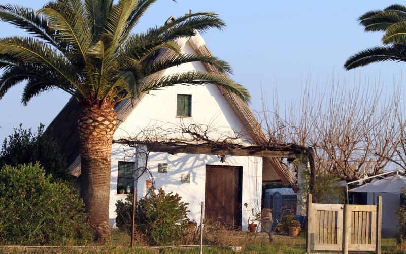 Cabane de pêcheurs à l'Albufera