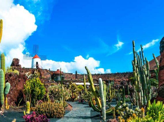 Le jardin de Cactus de Guatiza