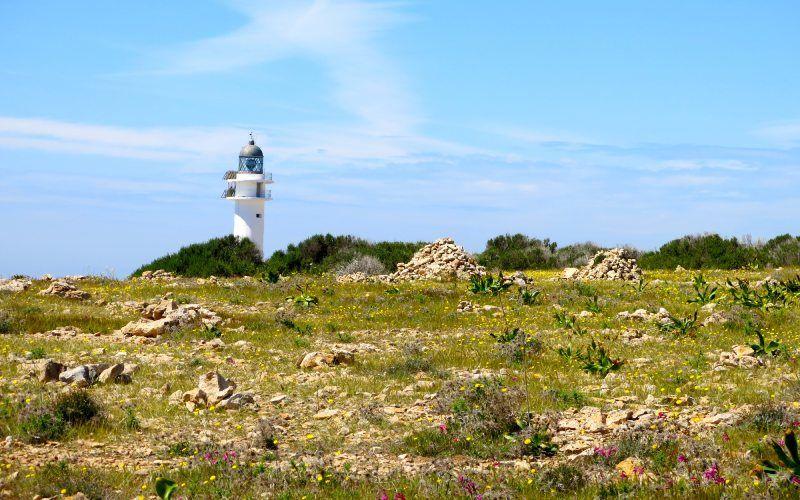Vue du Cap Barbaria avec le phare en arrière-plan