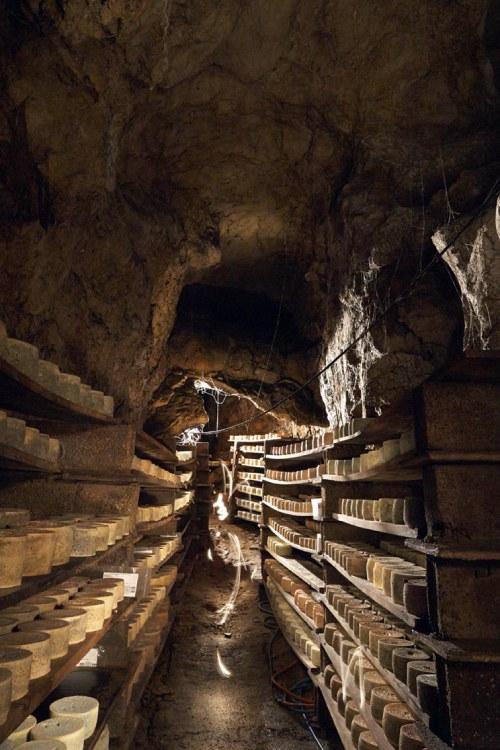 Grotte de maturation du Cabrales