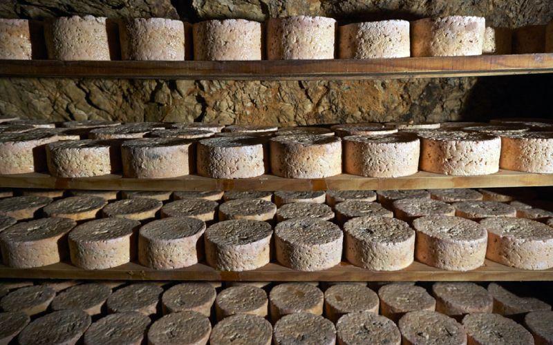 Fromages de Cabrales mûrissant