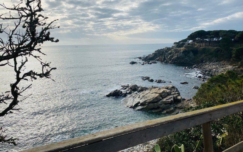Le chemin côtier vers la crique S'Alguer