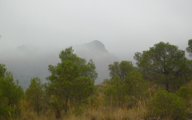 Piton volcanique de Cancarix