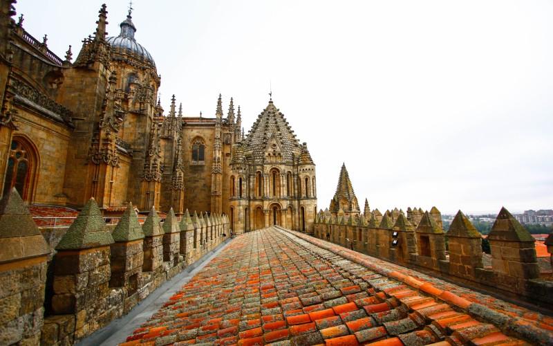 Partie supérieure de la vieille cathédrale, Salamanque