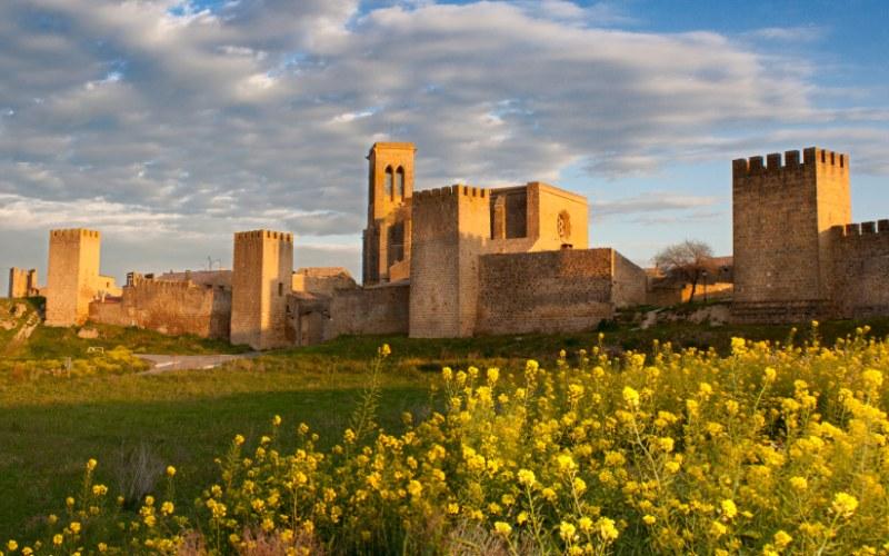 Forteresse d'Artajona et l'église de San Saturnino