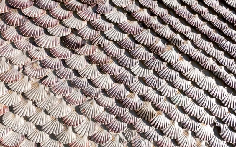 Les coquillages couvrent la façade de la chapelle de La Toja