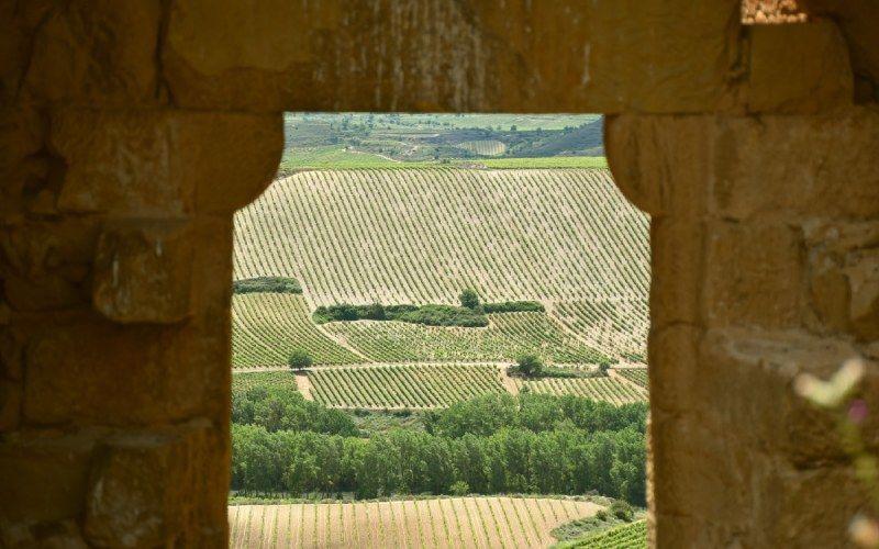 Porte principale du château de Davalillo