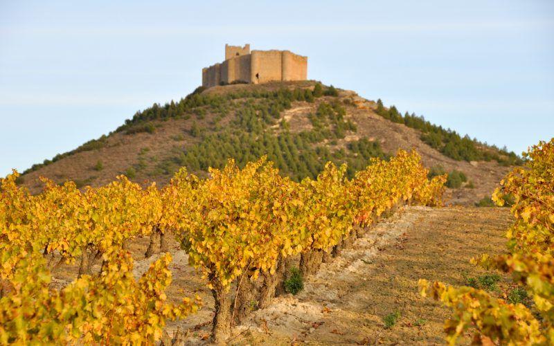 La silhouette de la forteresse fait partie du paysage de La Rioja