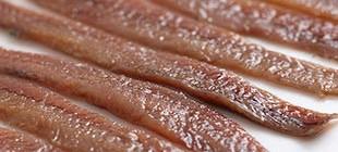 anchoa san sebastian
