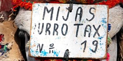 Mijas burrotaxi