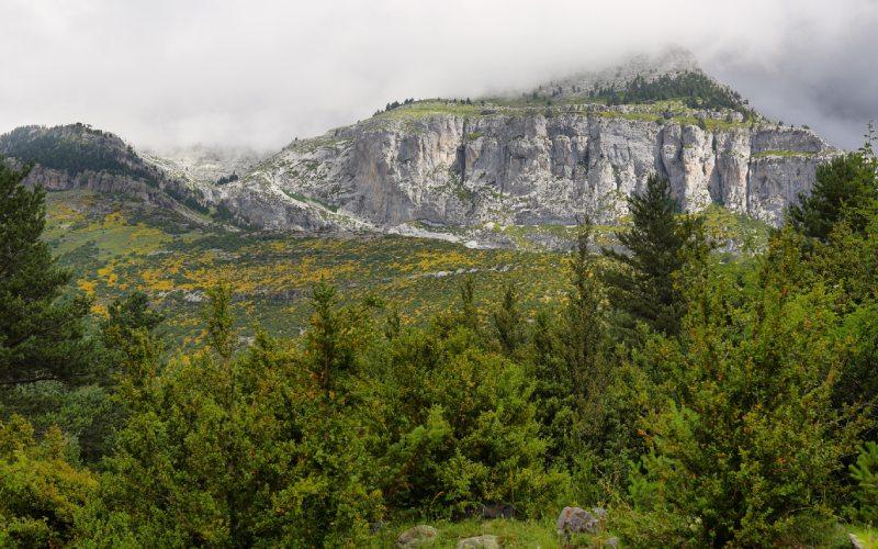 Paysage Pyrénéen aux alentours des Gorges d'Escuaín
