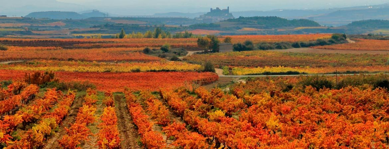 Patrimonio de la Humanidad de España