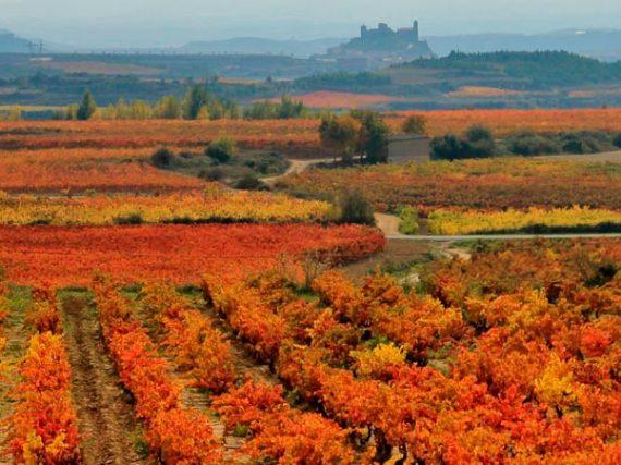 Les villes Espagnoles Patrimoine de l'Humanité que tu rêves de visiter II