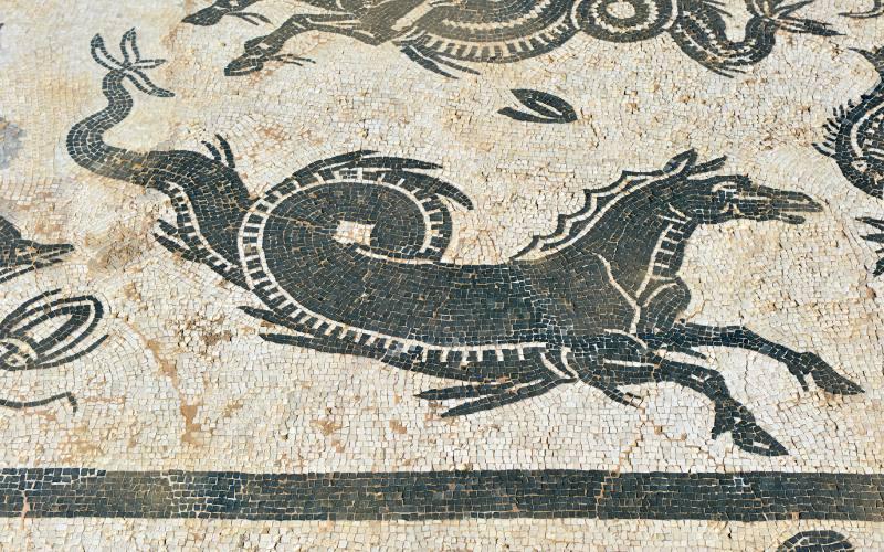 Mosaïque de l'hippocampe de la Maison de Neptune