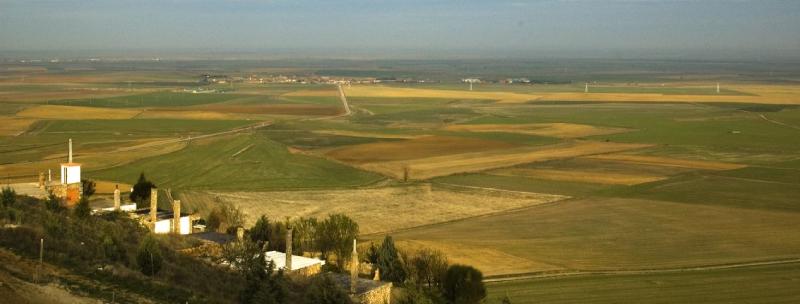 Landes de Palencia, l'une des régions castillanes de l'IGP