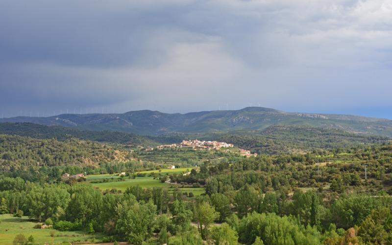 Végétation du Maestrazgo entre Teruel et Castellón