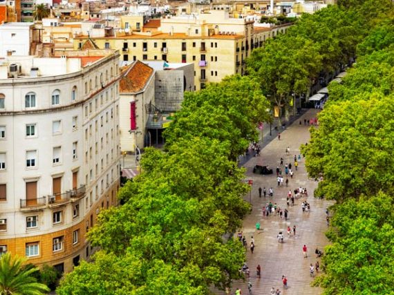 Las Ramblas de Barcelone, l'emblème de la capitale catalane