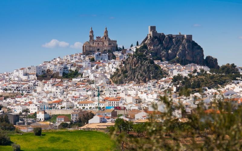 Vue panoramique du village d'Olvera, mettant en évidence l'église de Nuestra Señora de la Encarnación et le château