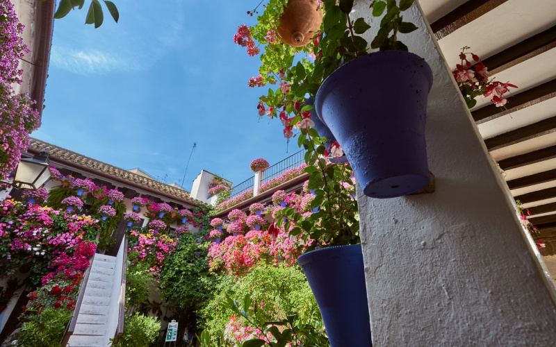 Architecture traditionnelle des patios de Cordoue