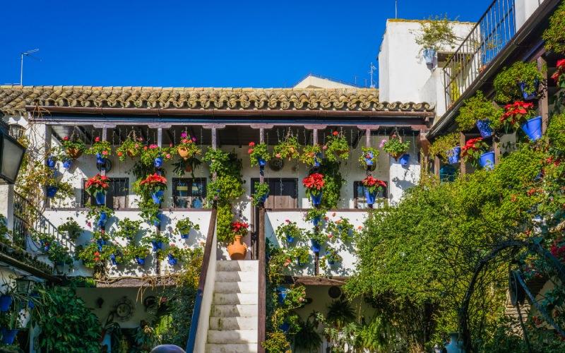 Une harmonie parfaite entre les fleurs et l'architecture traditionnelle