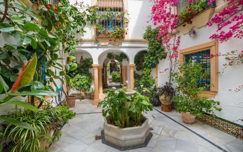 Un patio traditionnel de Cordoue