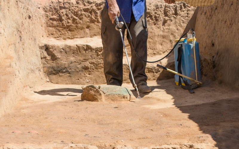 Travaux archéologiques à Guareña