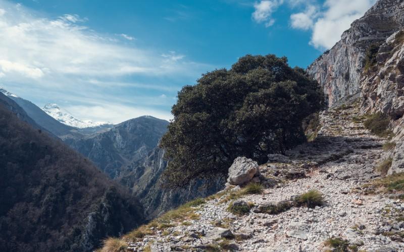 La route Tresviso-Urdón est l'une des préférées des amateurs de montagne
