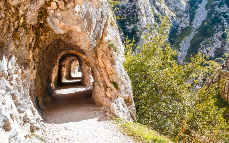 Les tunnels qui inondent l'ancienne ligne de chemin de fer